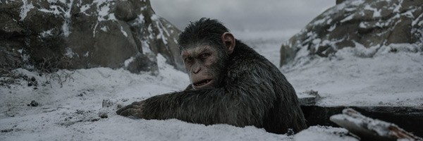 war-for-the-planet-of-the-apes-caesar-slice-600x200
